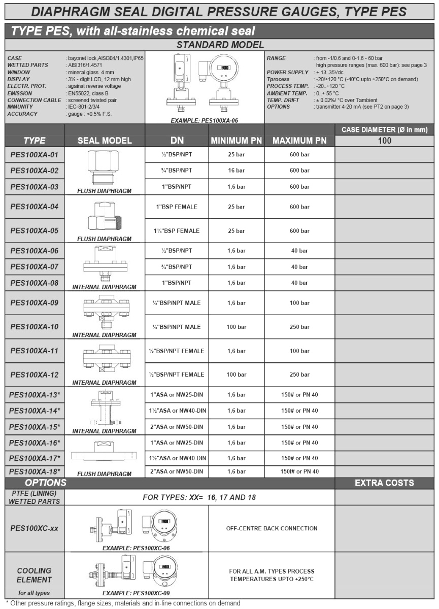PES chemical seal digitale manometers
